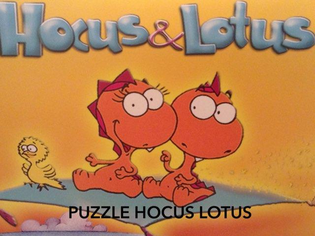PUZZLE HOCUS LOTUS by porto morumbi