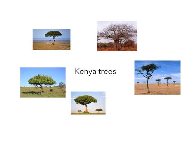 Kenya - Anna by FarBrook School