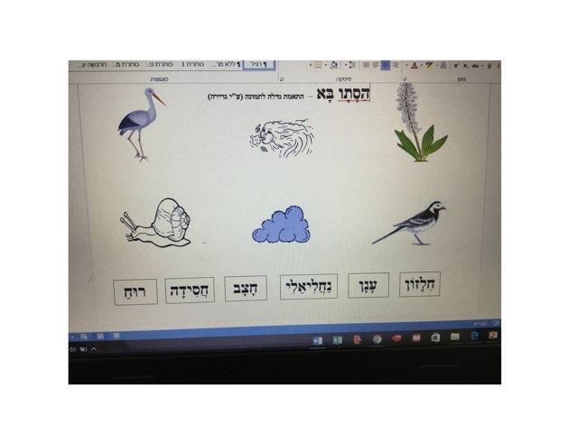 משחק 6 by Sapir V Tomer Mualem