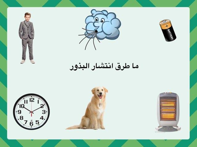 طرق انتشار البذور للصف الثالث by Mariam Alarfaj