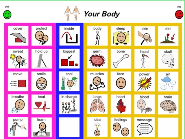 January Unique Unit Supplemental Reading Sight Word Find:  Your Body  by Tanya Folmsbee
