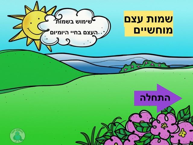 שמות עצם מוחשיים by אילנה כהן