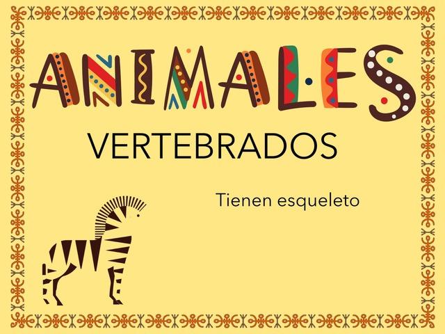 Animales Vertebrados by Jose Sanchez Ureña