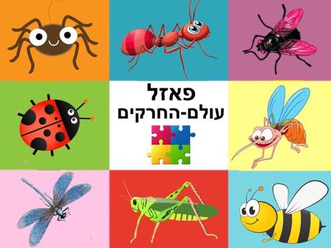 פאזל עולם החרקים by Liat Bitton-Paz