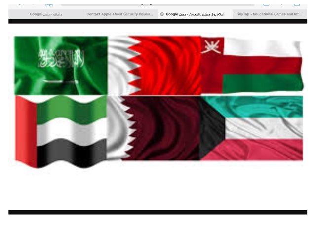 دول الخليج العربي by Fatima Salem