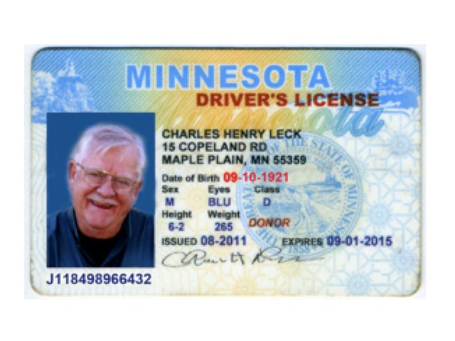 Driver's License  by Rebecca Jarvis