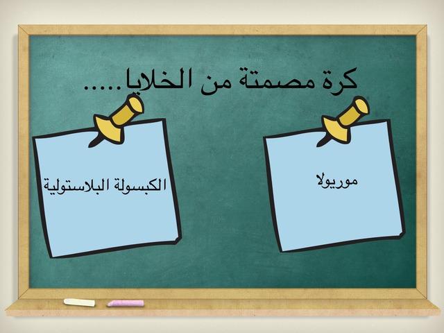 ٢ع by هدى الحربي