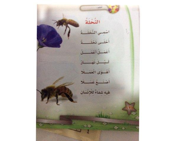 لعبة 23 by نادية القحطاني