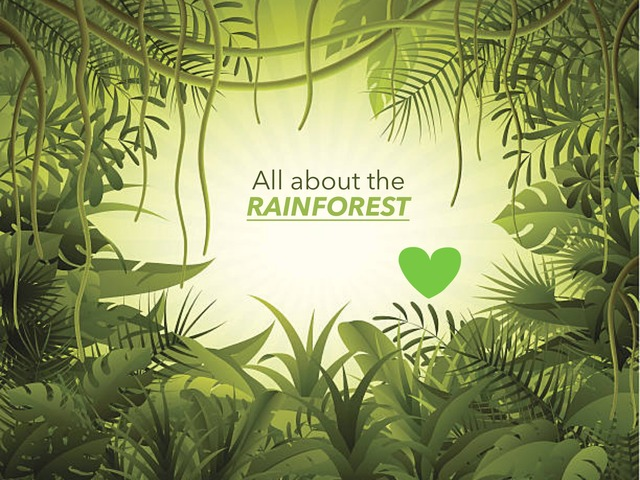 Shyla's Rainforest fun by RGS Springfield