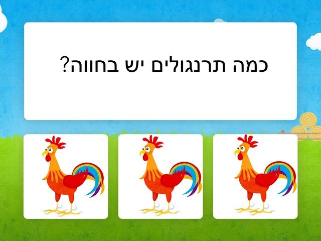 יעל מרלין by יעל מרלין