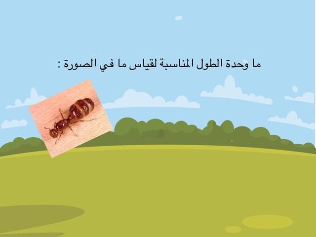 وحدات الطول  by Mnosh1401 Mub