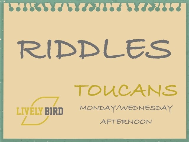 TOUCANS M/W AFTERNOON by Lively Bird Uirapuru