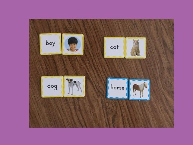 Boy,dog,horse,cat by Laura Crawley