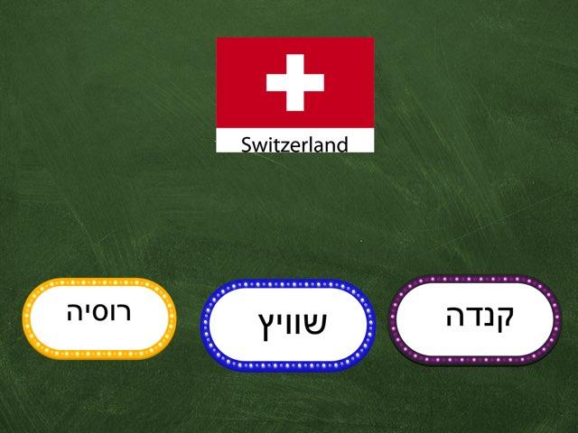דגלים רותם  וברק by בית ספר קישון