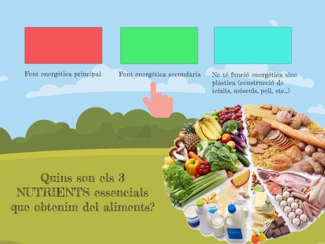 Els Nutrients by Marc Begué