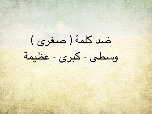 ثروة لغوية ابن النفيس  by Mahed Altarsha