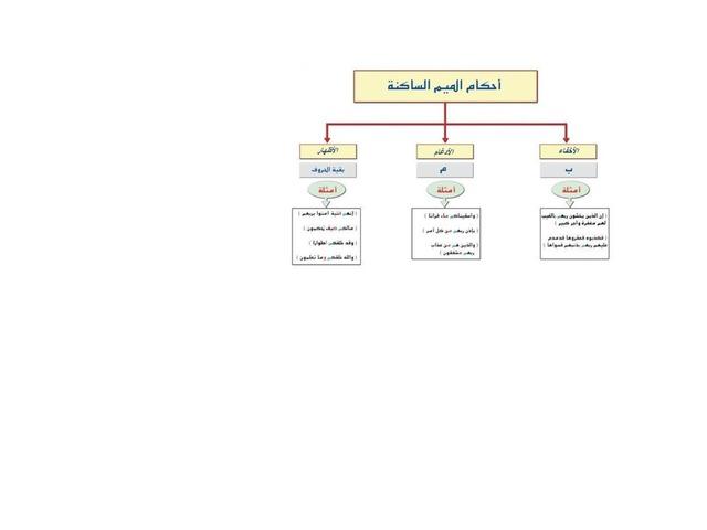 احكام by Nasser Hassan