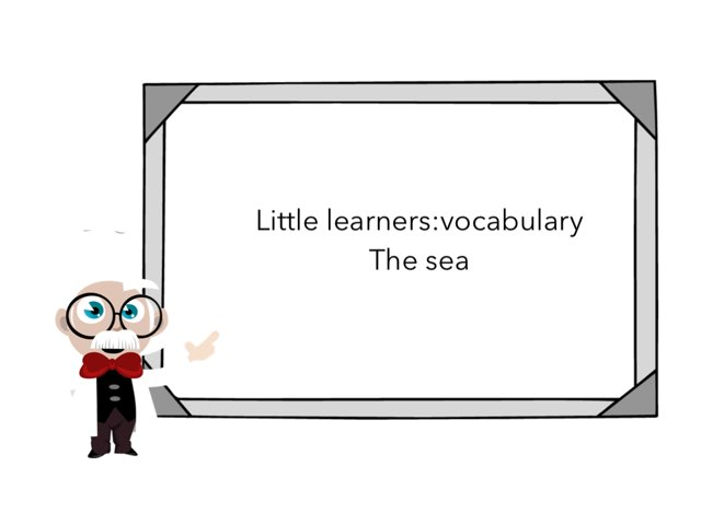 Little Learners:vocabulary The Sea by Flora Silver