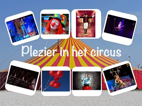 Plezier In Het Circus  by Catherine Davies