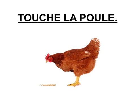 Touche La Poule. by Valerie Escalpade