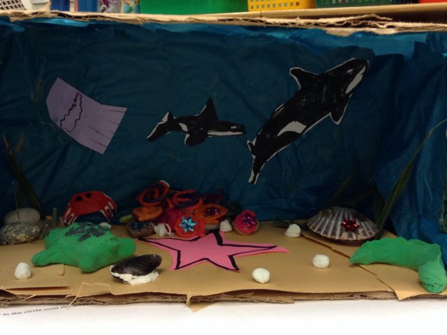 508 Ocean by 2nd Grade
