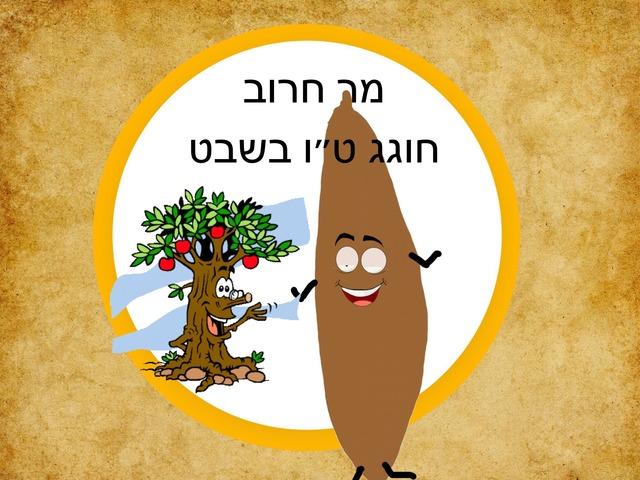 סיפור לטו בשבט by נועה יוסף