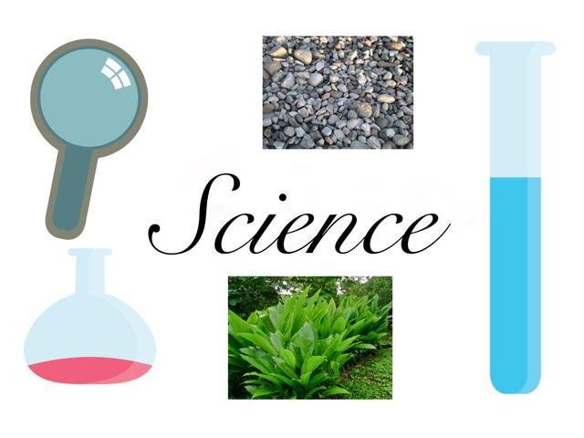 Science-rocks by Jomana Ahmed