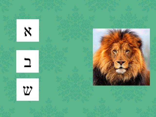 משחק 55 by Reut Yichya