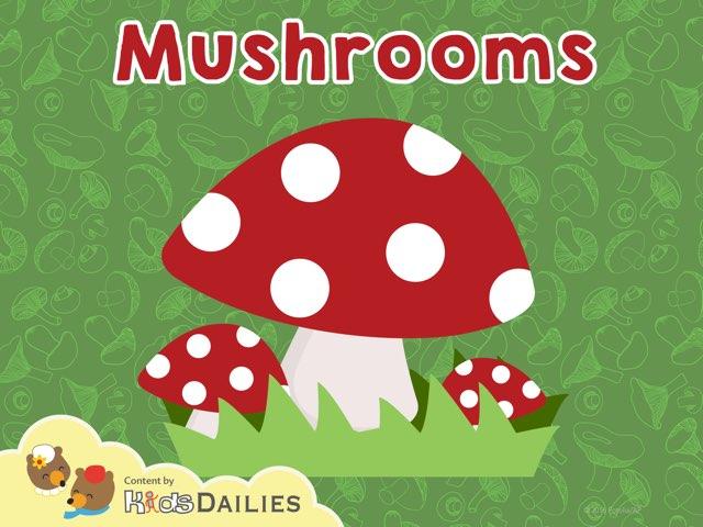 Mushrooms by Kids Dailies