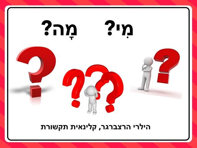 הבנת שאלות - מי? מה? by Hilary Herzberger
