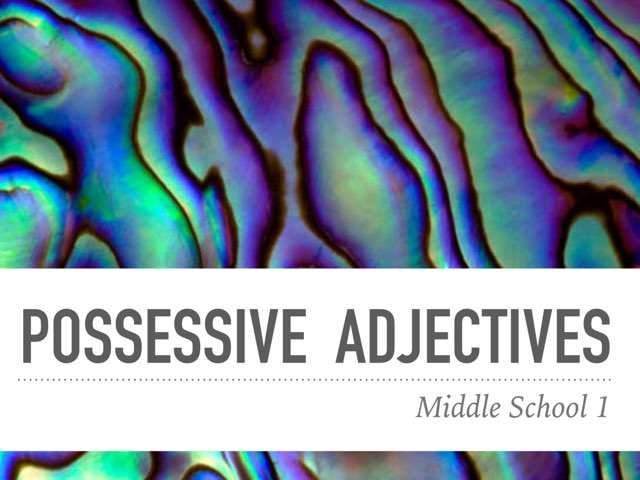 M1-wow-possessive adjectives -test by Teeny Tiny TEFL