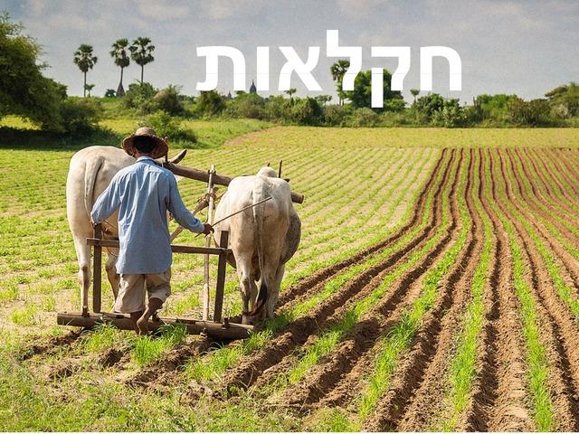 חקלאות חלק א by ערן אופיר