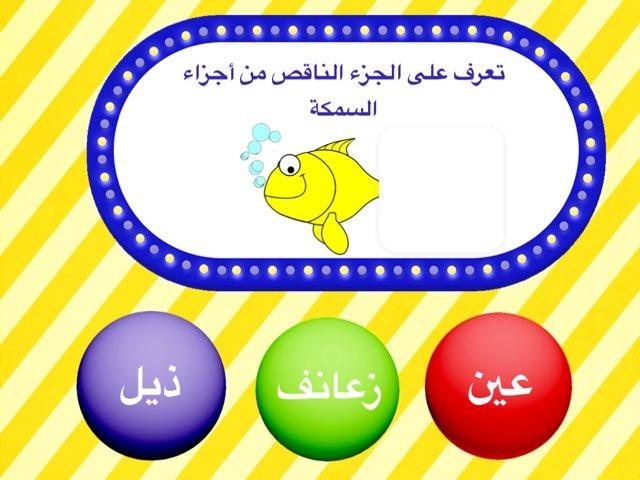 خصائص الاسماك by Abla amoon