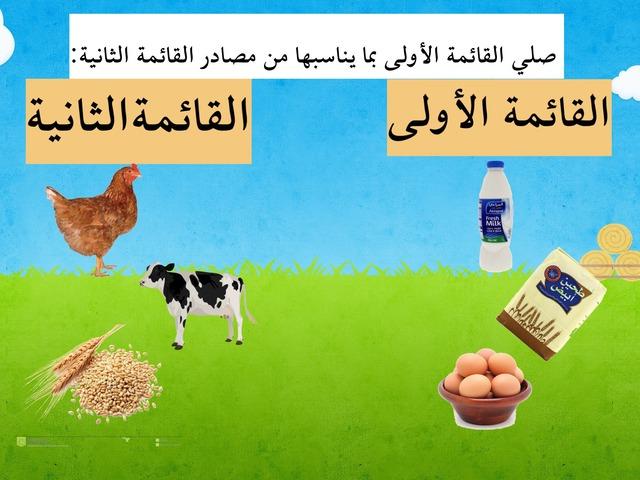دجاجة by alotiabi mmo