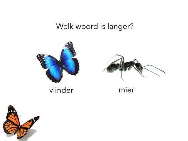 Welk Woord Is Langer?  by Di schim