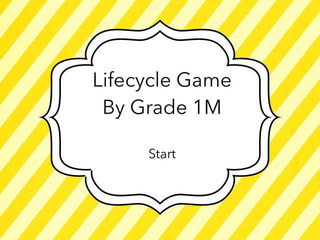 Lifecycle By Grade 1M by Carmel Year 1