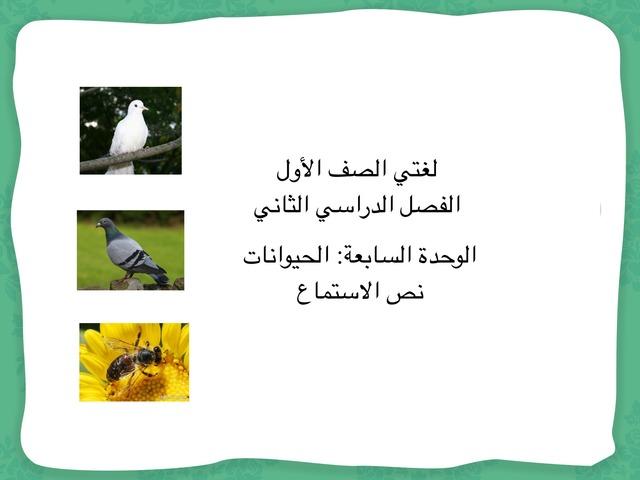 وحدة الحيوانات by Fafi Greeb