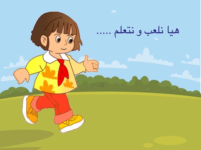 نشاط لغتي ١ / الجمع السالم  by abeer Ss