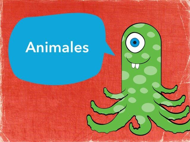 Animales  by Margarita Ortiz