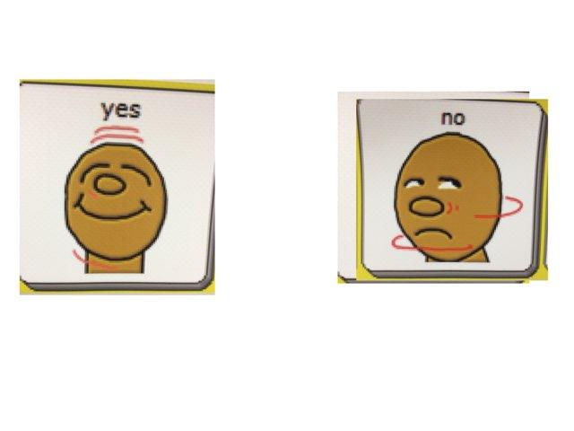 Yes No by Patti Triplett