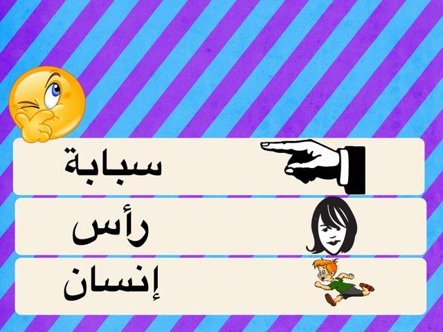 كلمات التصور البصري by Haifa Awwad
