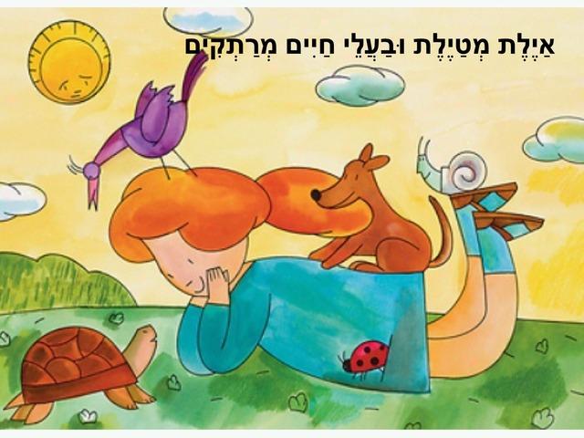 איילת מטיילת ובעלי החיים by shiri sapir