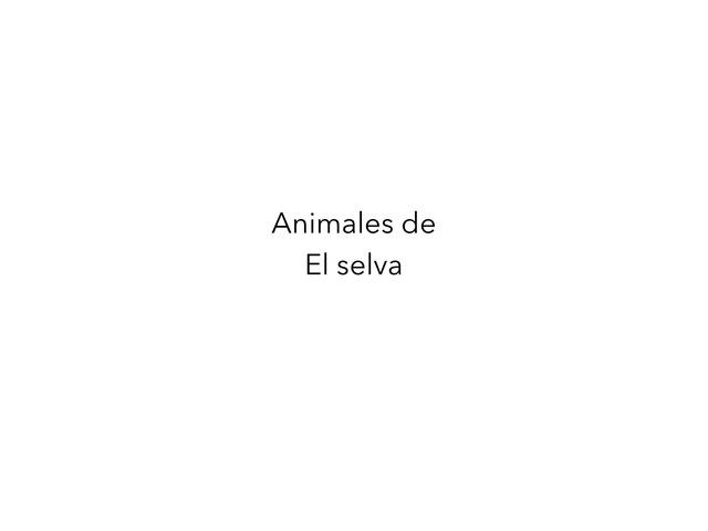 La Selva by Esperanza Meli
