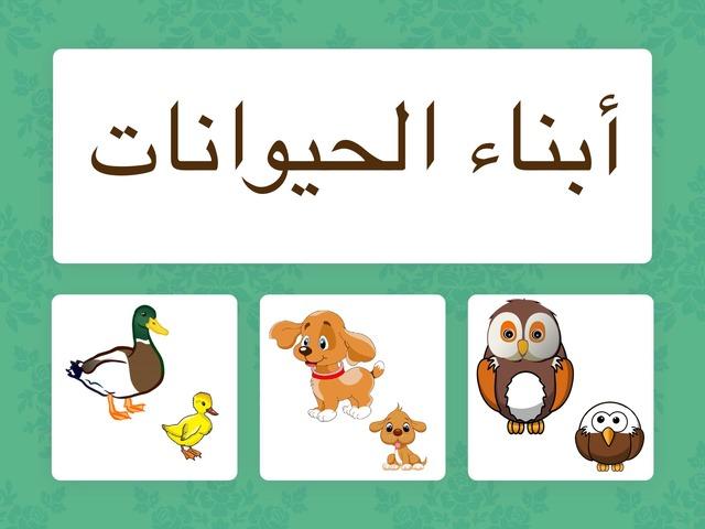 أبناء الحيوانات  by Hadi  Oyna