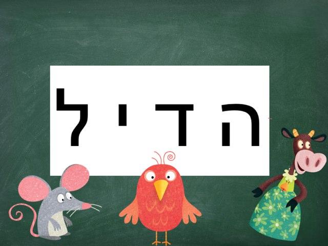 פאזל הדיל by Adi Gershon