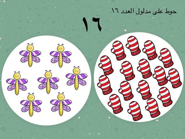 العدد١٦  by Mariam Qasem