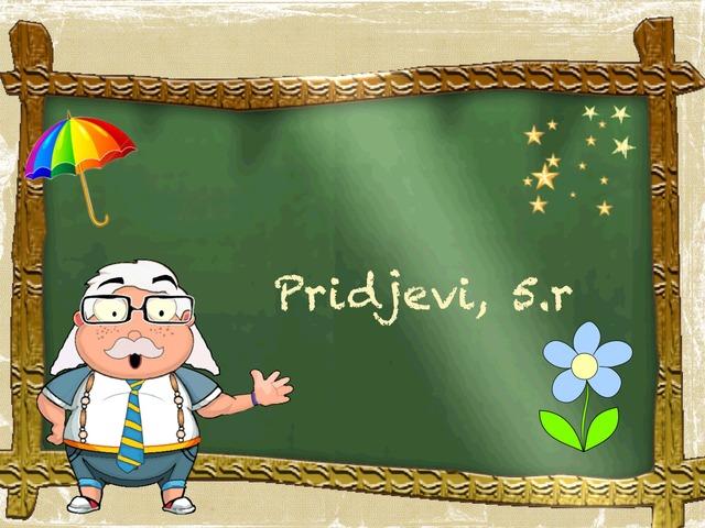 Pridjevi, 5.r by Sonja Perković