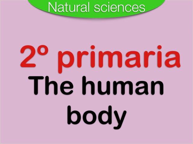 The Human Body by Elysia Edu