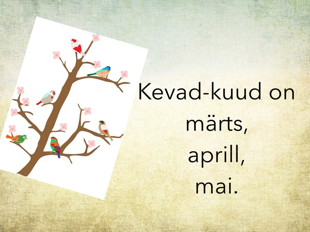 Kevad by Michelle-Natali Omeljantsuk