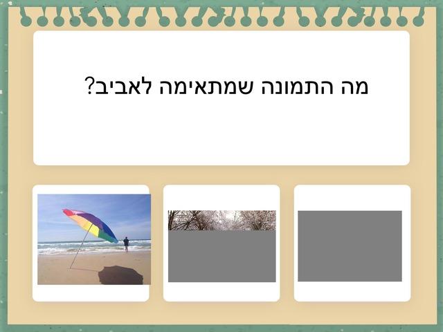 אביב רינת ויעל by Rinat Hagay Salto